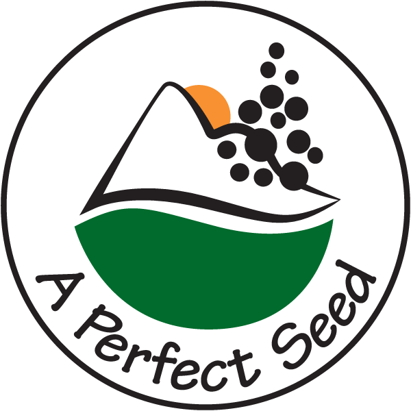 A Perfect Seed